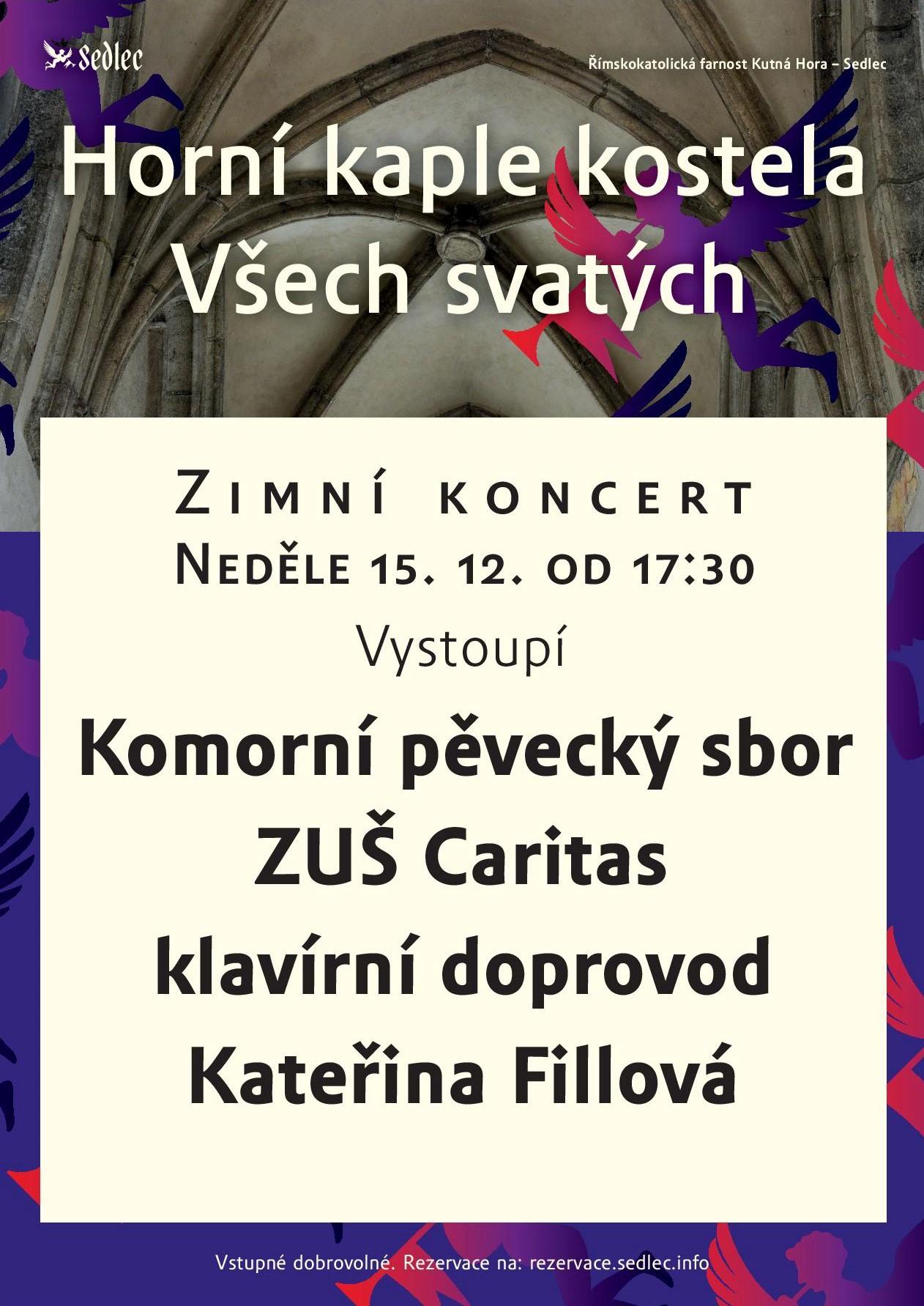 7256-zimni-koncert-horni-kaple-2019-a4-page-001.jpg